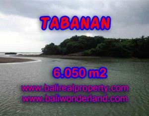 TANAH DI TABANAN DIJUAL TJTB098 – INVESTASI PROPERTY DI BALI