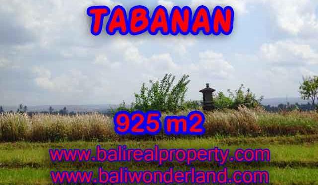 TANAH DIJUAL DI TABANAN BALI MURAH TJTB135 - PELUANG INVESTASI PROPERTY DI BALI