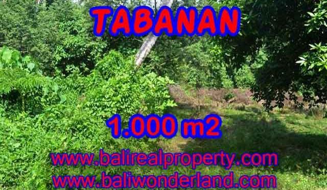 DIJUAL TANAH DI TABANAN BALI MURAH TJTB114 - INVESTASI PROPERTY DI BALI