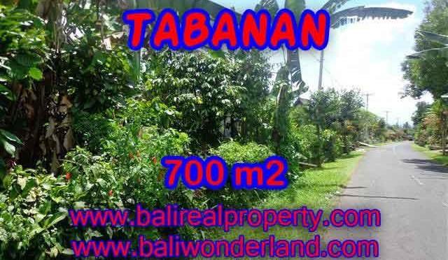 DI JUAL TANAH DI TABANAN BALI TJTB090 - PELUANG INVESTASI PROPERTY DI BALI