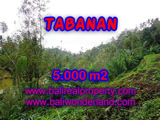 DIJUAL TANAH MURAH DI TABANAN BALI TJTB139