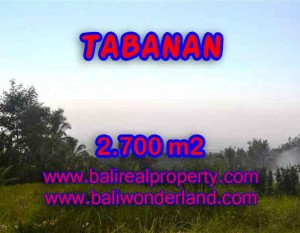 TANAH DI TABANAN DIJUAL TJTB128 – INVESTASI PROPERTY DI BALI