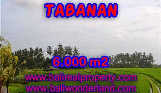 INVESTASI PROPERTI DI BALI - DIJUAL TANAH DI BALI, MURAH DI TABANAN TJTB093