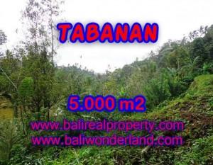 JUAL TANAH DI TABANAN RP 270.000 / M2 – TJTB139