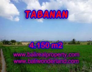 DIJUAL TANAH MURAH DI TABANAN BALI TJTB137 – KESEMPATAN INVESTASI PROPERTY DI BALI