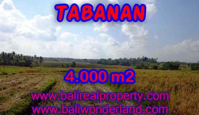 INVESTASI PROPERTI DI BALI - TANAH DI BALI, MURAH DI TABANAN DIJUAL RP 450.000 / M2 - TJTB132