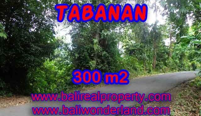 JUAL TANAH DI TABANAN BALI TJTB116