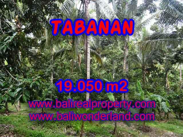 TANAH DI BALI, MURAH DI TABANAN DIJUAL TJTB092 - INVESTASI PROPERTY DI BALI