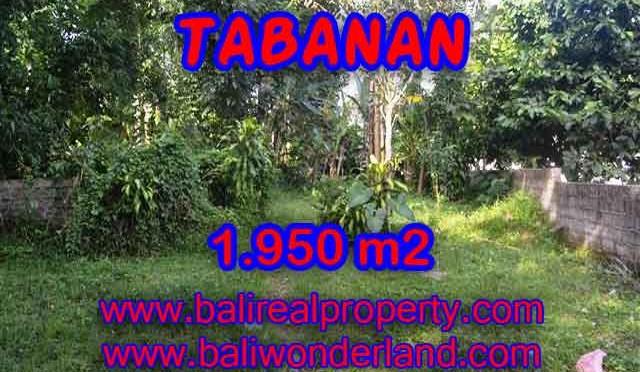DIJUAL MURAH TANAH DI TABANAN TJTB130 - PELUANG INVESTASI PROPERTY DI BALI