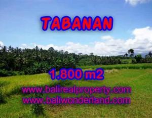 JUAL TANAH DI TABANAN BALI TJTB106 – PELUANG INVESTASI PROPERTY DI BALI