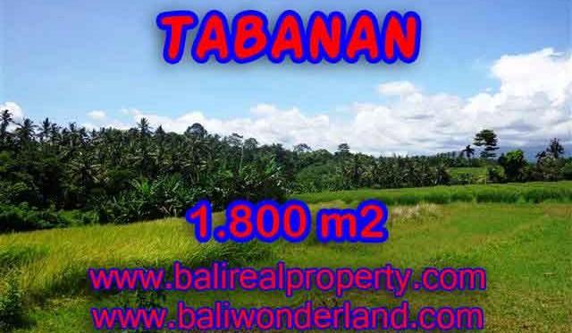 JUAL TANAH DI TABANAN BALI TJTB106 - PELUANG INVESTASI PROPERTY DI BALI