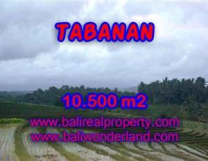 Jual Tanah murah di TABANAN TJTB095 – Kesempatan investasi property di Bali