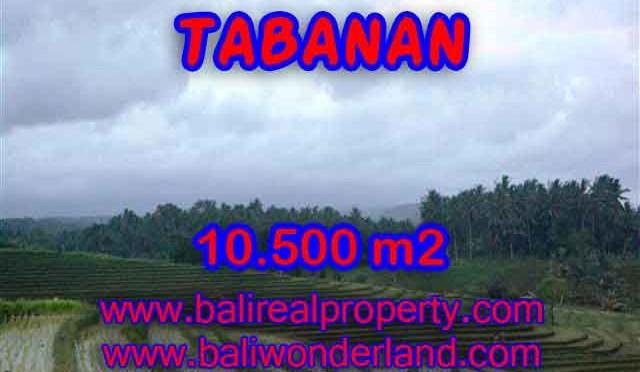 Jual Tanah murah di TABANAN TJTB095 - Kesempatan investasi property di Bali
