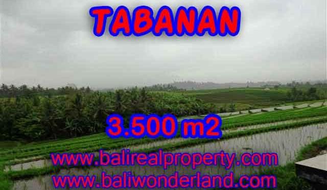TANAH MURAH DI TABANAN DIJUAL RP 520.000 / M2 - TJTB141