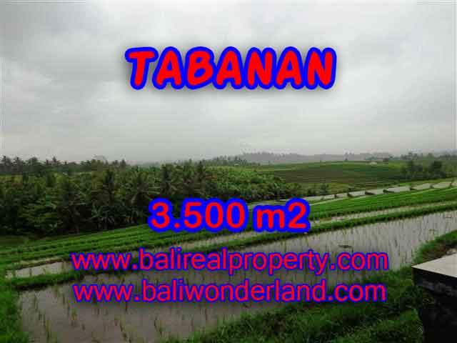 MURAH ! DIJUAL TANAH DI TABANAN BALI TJTB141
