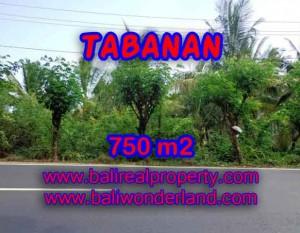 Murah ! Tanah di TABANAN Bali Dijual Rp 1.450.000 / m2 – TJTB138