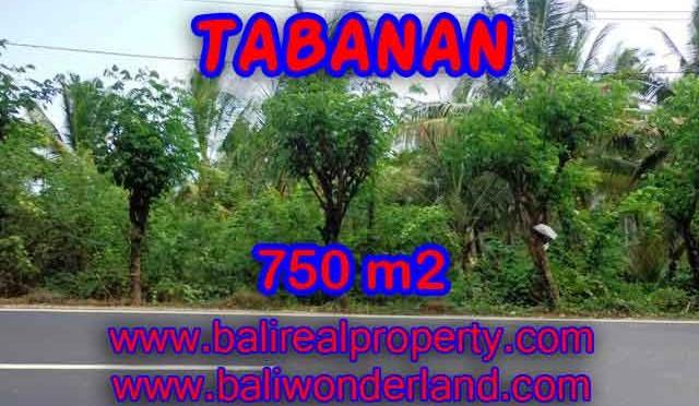 Murah ! Tanah di TABANAN Bali Dijual Rp 1.450.000 / m2 - TJTB138