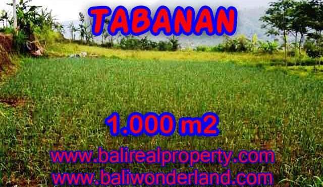 MURAH ! TANAH DI TABANAN BALI TJTB101 - INVESTASI PROPERTY DI BALI