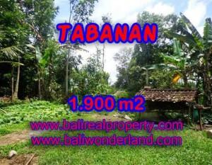 JUAL TANAH DI TABANAN BALI MURAH RP 350.000 / M2 – TJTB091