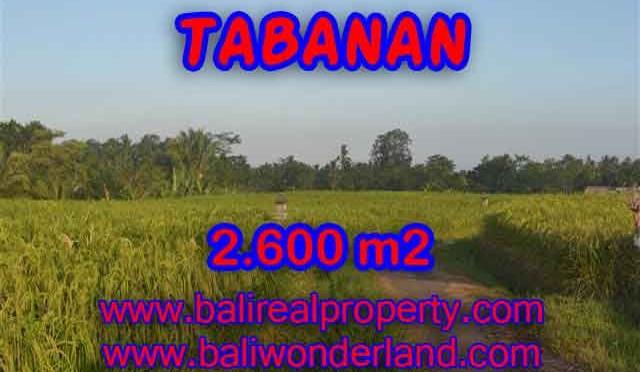 DIJUAL TANAH MURAH DI TABANAN TJTB129 - PELUANG INVESTASI PROPERTY DI BALI