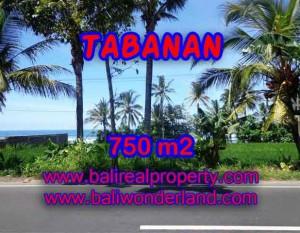 Kesempatan Investasi Properti di Bali – Jual Tanah murah di TABANAN TJTB105