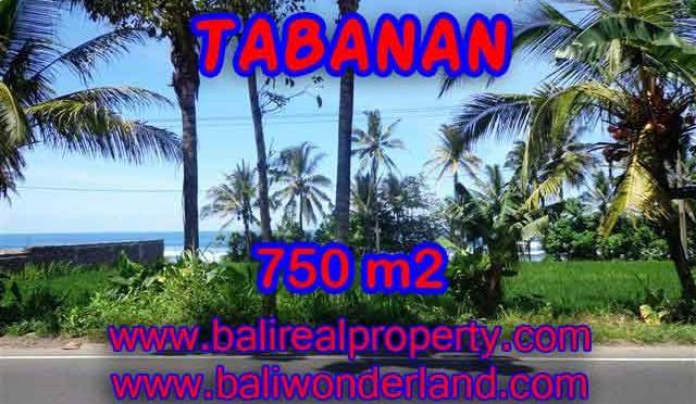 Kesempatan Investasi Properti di Bali - Jual Tanah murah di TABANAN TJTB105