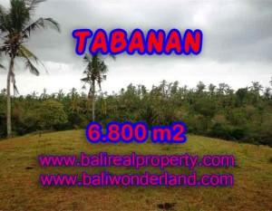 TANAH DIJUAL DI TABANAN RP 320.000 / M2 – TJTB140
