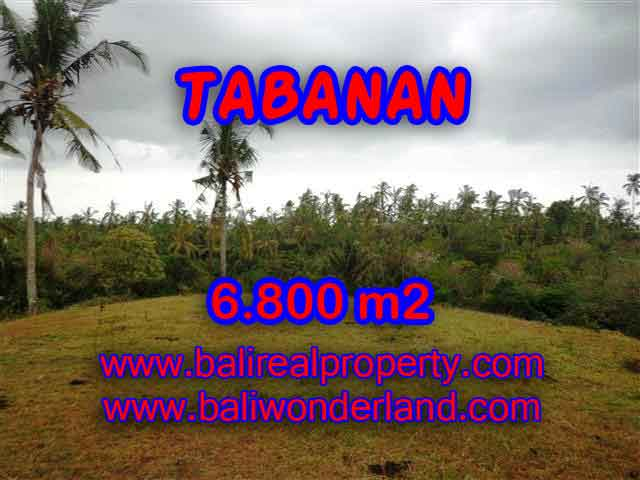TANAH MURAH DI TABANAN BALI TJTB140 - INVESTASI PROPERTY DI BALI