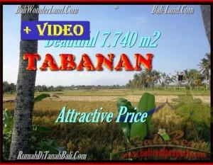 INVESTASI PROPERTY, TANAH DIJUAL MURAH di TABANAN BALI TJTB173