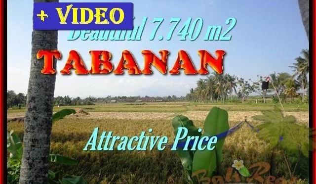 TANAH di TABANAN BALI DIJUAL TJTB173