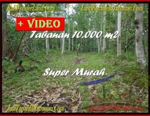 TANAH MURAH di TABANAN BALI 100 Are  View Gunung