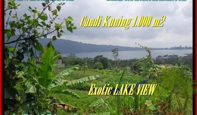 TANAH JUAL MURAH TABANAN BALI 10 Are View Danau Beratan dan Gunung