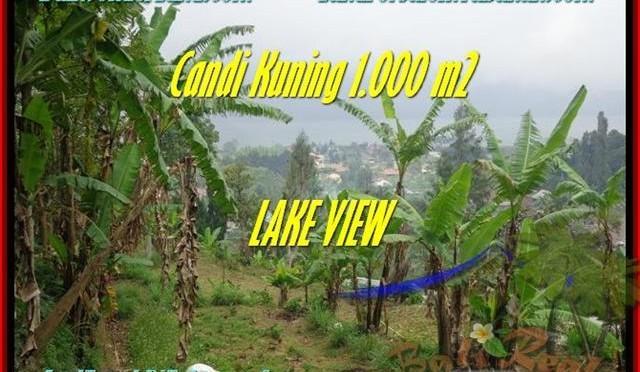 JUAL TANAH MURAH di TABANAN 1.000 m2 View Danau Beratan dan Gunung