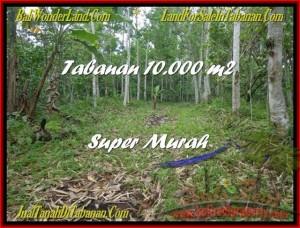 JUAL TANAH MURAH di TABANAN BALI 100 Are Gunung dan Kota Denpasar