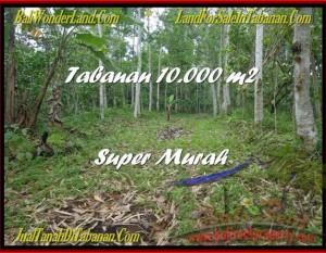 TANAH MURAH di TABANAN BALI 10.000 m2  Gunung dan Kota Denpasar
