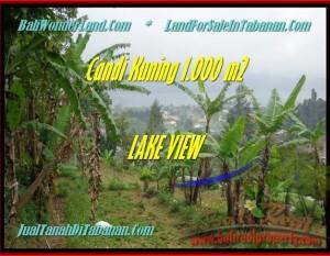 JUAL TANAH di TABANAN BALI 10 Are View Danau Beratan dan Gunung