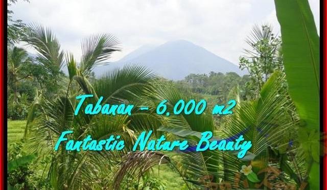 JUAL TANAH di TABANAN BALI 60 Are View Gunung, sawah, sungai dan Laut Selatan