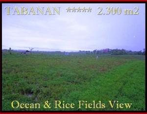TANAH MURAH di TABANAN BALI 23 Are View laut, sawah dan gunung