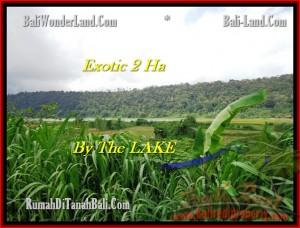 JUAL TANAH MURAH di TABANAN BALI 20,000 m2  view Gunung dan danau Buyan