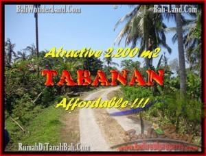 TANAH DIJUAL MURAH di TABANAN BALI TJTB169
