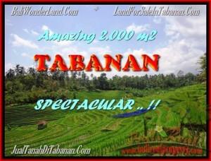 JUAL TANAH di TABANAN BALI 2.000 m2  View sawah gunung dan laut