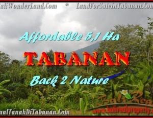 TANAH DIJUAL MURAH di TABANAN BALI Untuk INVESTASI TJTB166