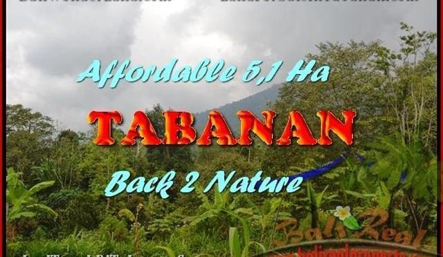 TANAH MURAH di TABANAN BALI 51,100 m2 View gunung dan laut singaraja