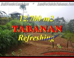 JUAL MURAH TANAH di TABANAN 12,700 m2 di Sukasada