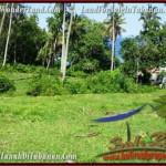 TANAH di TABANAN BALI DIJUAL MURAH 70 Are View Laut dan Kebun