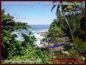 TANAH MURAH di TABANAN BALI 70 Are View Laut dan Kebun