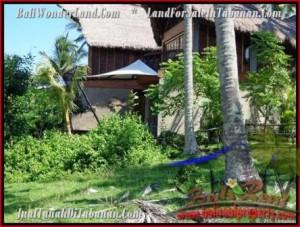 TANAH di TABANAN BALI DIJUAL 70 Are View Laut dan Kebun