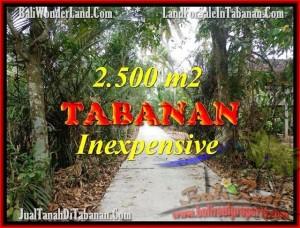 JUAL TANAH di TABANAN BALI 2,500 m2  View kebun