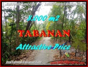 TANAH DIJUAL MURAH di TABANAN BALI 8,000 m2 di Tabanan Selemadeg