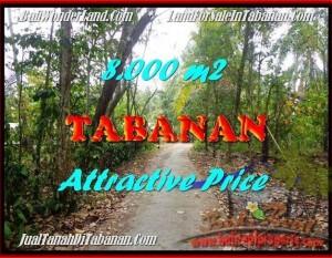 JUAL TANAH MURAH di TABANAN BALI 80 Are View kebun